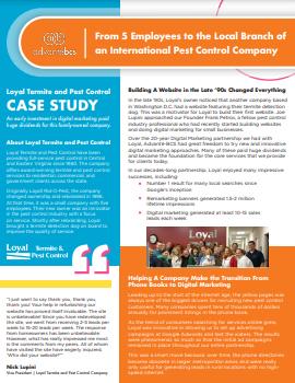 termite case study